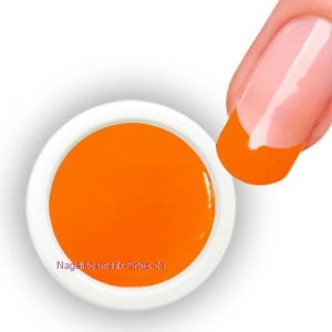 Farbgel Neon Orange 5g/4,34ml